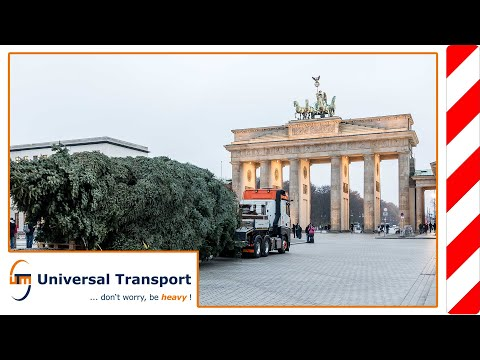 A christmas tree for Berlin - Universal Transport